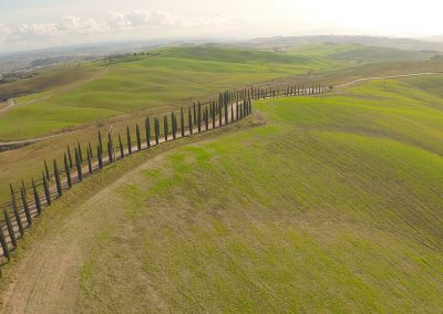 Vedute paesaggio dopo Siena